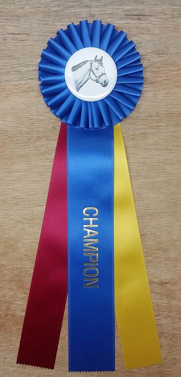 quick ship horse show champion rosette ribbon