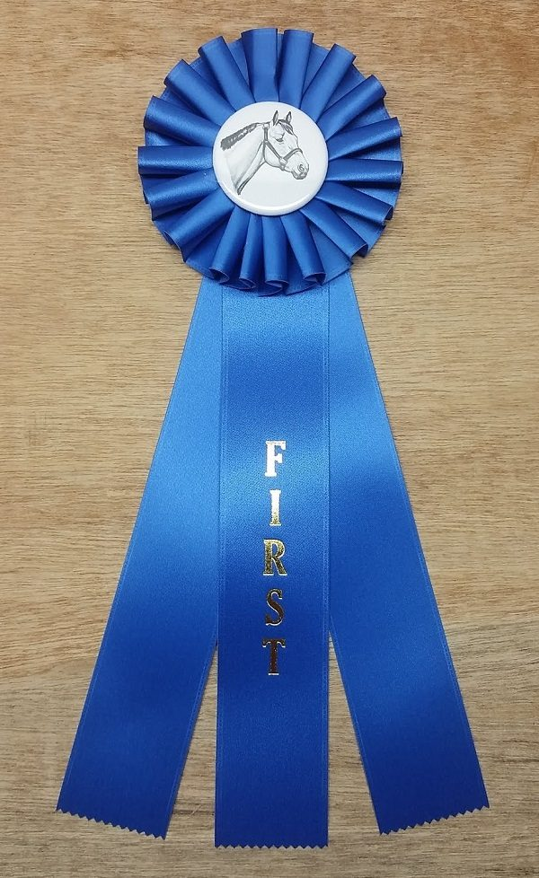 quick ship horse show rosette ribbon first place