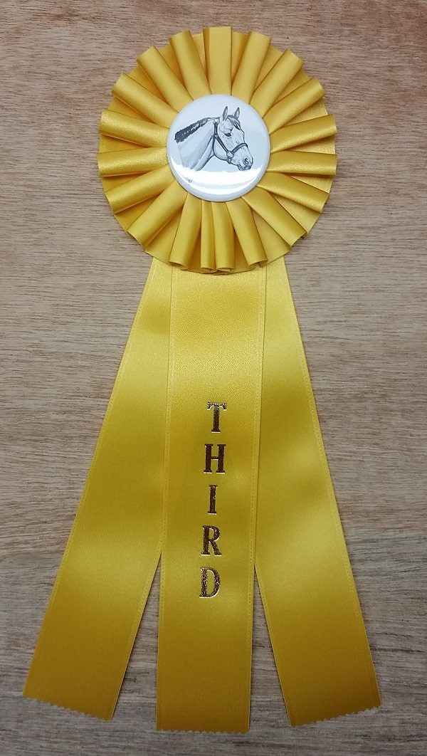 quick ship horse show rosette ribbon third place