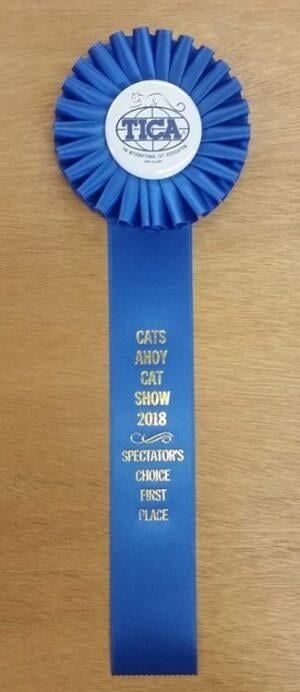 simple 15 award ribbon custom rosette