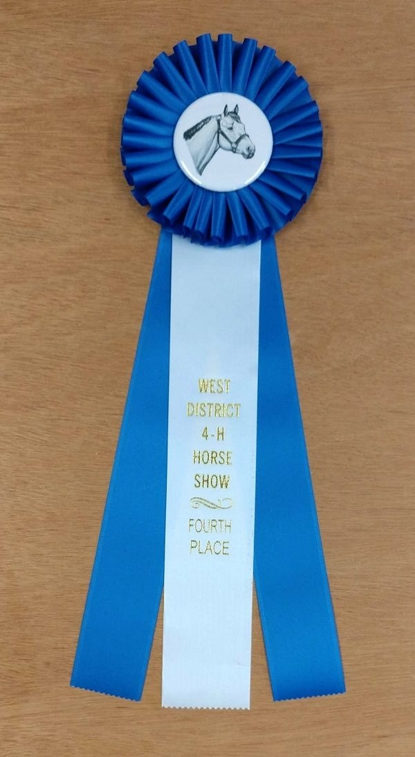 versatility 15 award ribbon custom rosette
