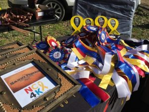 horse show ribbons for a cancer research