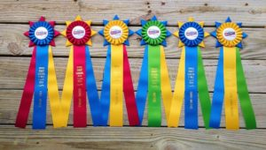 award rosette ribbon for horse show, dog show, cat show, livestock show, poultry show, rabbit show