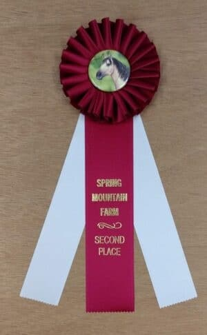 timeless 12 award ribbon custom rosette