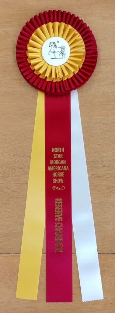 deluxe 22 champion award rosette ribbon