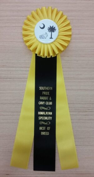 eclectic 15 award ribbon custom rosette