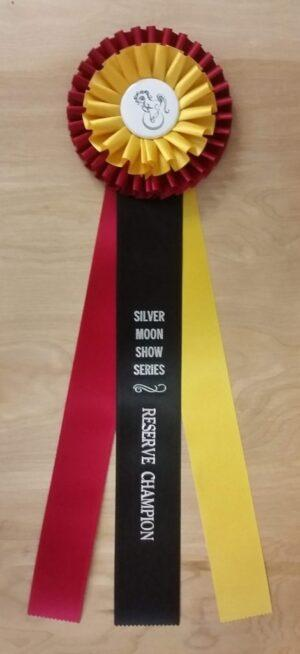 forever 18 champion award rosette ribbon